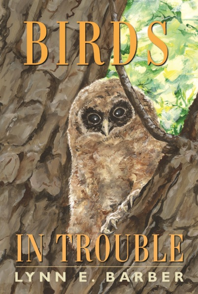 BIRDS IN TROUBLE BOOK JACKET - CROPPED